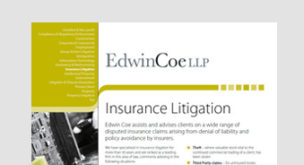 Insurance Litigation Factsheet