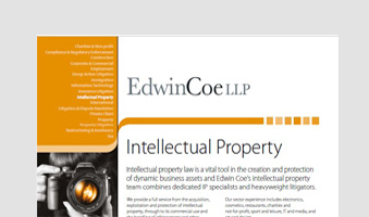Intellectual Property Factsheet