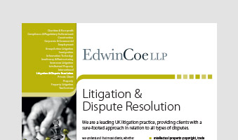 Litigation & Dispute Resolution Factsheet