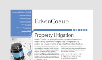 Property Litigation Factsheet