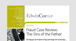 Fraud case review: the sins of the father