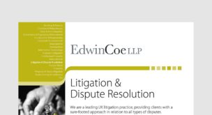 Litigation & Dispute Resolution Factsheet