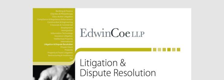 Litigation Dispute Resolution factsheet cover