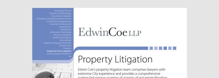 property litigation factsheet cover
